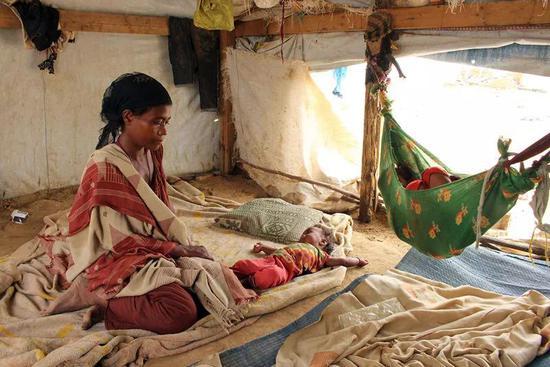 6月19日,在也门哈杰的一处临时营地,从荷台达逃离的人们在临时居所休息。新华社/法新