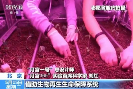 """""""月宫一号""""总设计师""""月宫365""""实验首席科学家刘红"""