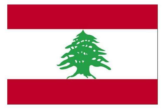 ▲黎巴嫩的国旗上的图标就是雪松