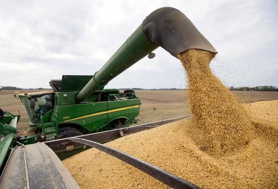 ▲資料圖片:在美國印第安納州的一處農場,農民在收割大豆。(美聯社)