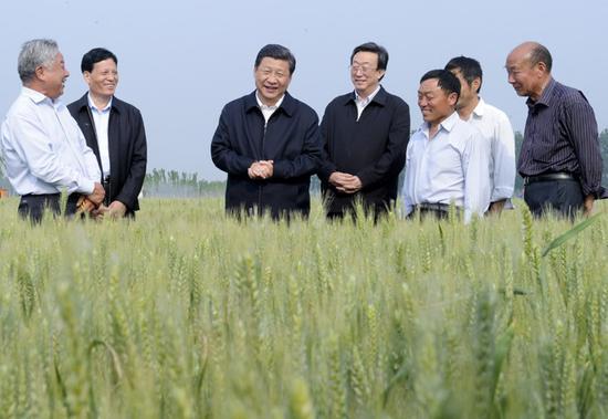 2014年5月9日至10日,习近平在河南省考察工作。(图片来自:新华网)