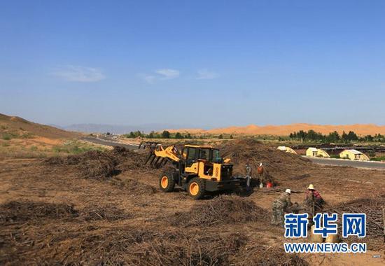 在内蒙古鄂尔多斯市杭锦旗,工人为新修的穿沙公路制作沙障(7月26日摄)。新华社记者 卢烨 摄