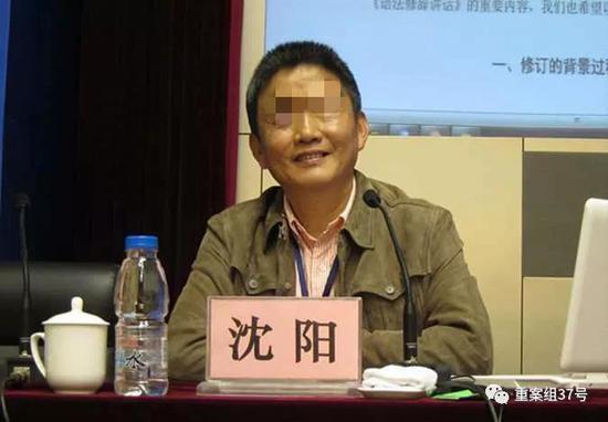 ▲南京大学教授沈阳。
