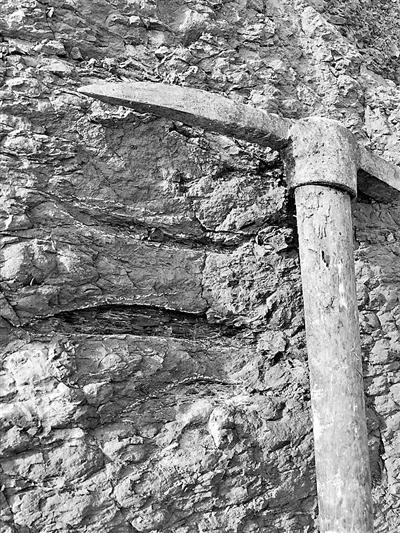 各趾平行的兽脚类恐龙足迹
