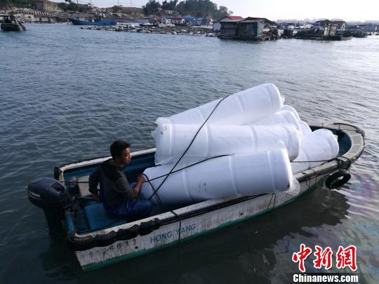 肖宇金正忙碌着往渔排上运载泡沫浮球,在他和工人的努力下,渔排终于浮出水面。 陈龙山 摄
