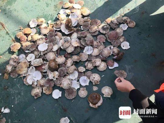 太阳城娱乐官网注册 - 滚动|惠州启动暴雨Ⅲ级应急响应,未来6小时仍有强降水
