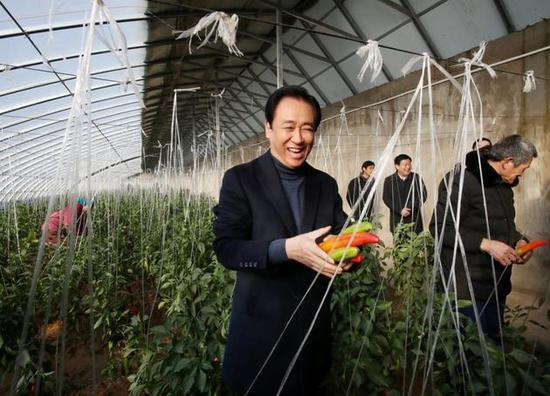 考察現代生態循環農業產業基地的溫室大棚。
