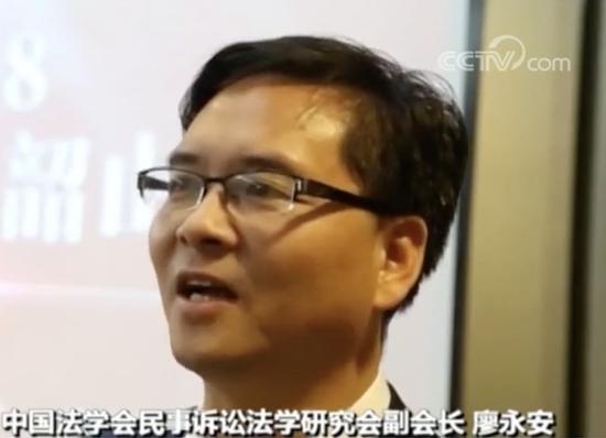 中国法学会民事诉讼法学研究会副会长 廖永安: