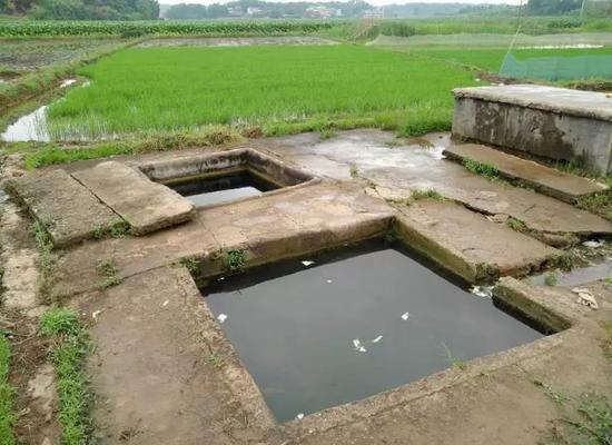 邓某艳和村民屡发冲突的泉井,远端为饮用水井,近端为洗衣用井