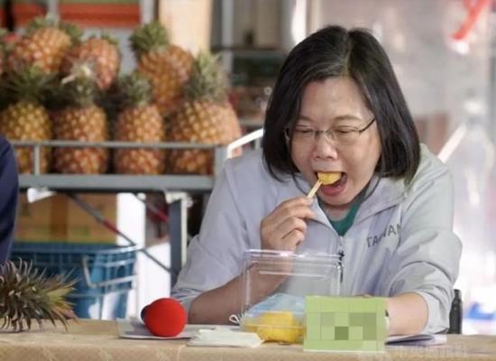 """台湾""""菠萝闹剧"""":拿民众的钱洗民众的脑!图片"""