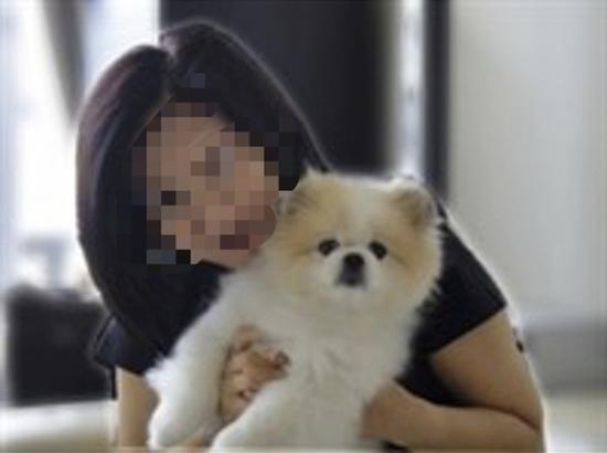 香港通报患者宠物狗低程度感染新冠病毒,部分专家此前持不同看法图片