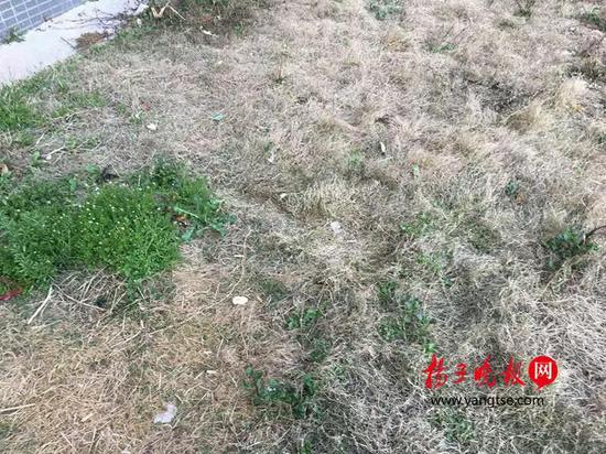 坠落草地。