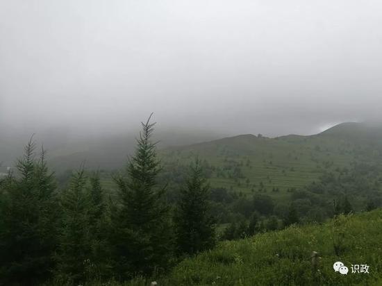 高山草甸美景躍入眼簾