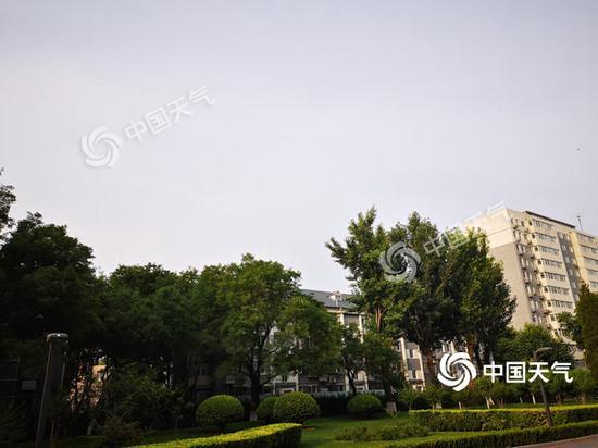今晨,北京体感气温稍显闷热。(图/王雯雯)