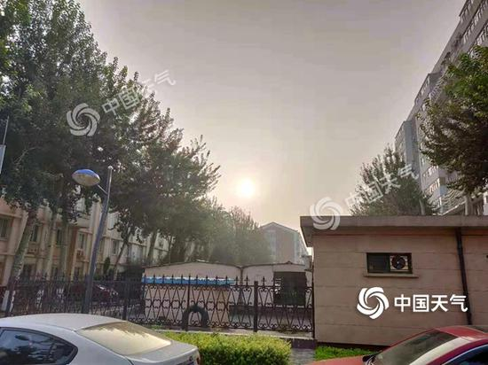 北京阳光逐渐上线,闷热来袭。(图/张晗熙)