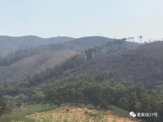 ▲19名牺牲人员遇难的山头。新京报记者 王昱倩 摄