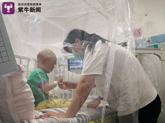 嘉嘉在医院接受治疗