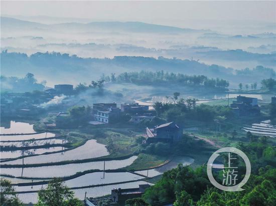 """重庆市3年创建1449个绿色示范村 各有各的""""俏模样""""图片"""