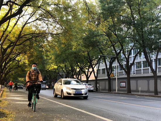 查处违章停车,北京将赋予街巷长和停车管理员执法权图片