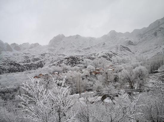 今冬北京山区来了头场雪!群山戴雪,超美!图片