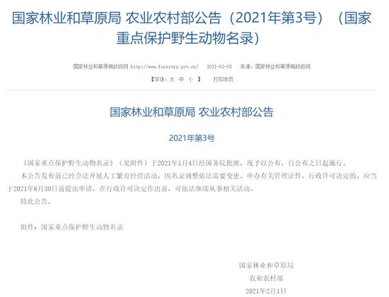 """上海""""土著居民""""貉的野外种群升为国家二级保护动物图片"""