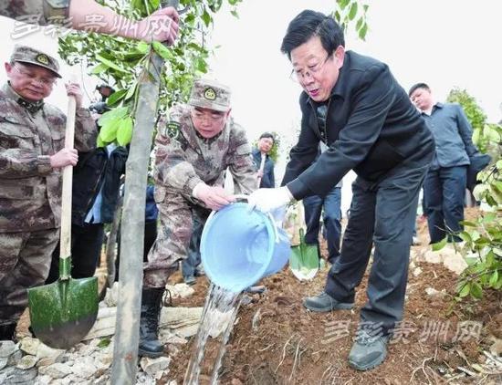 赵克志为树木培土浇水