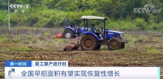 [杏耀主管]记者实地探访我国粮食主产杏耀主管区今图片