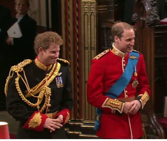 哈里与哥哥威廉