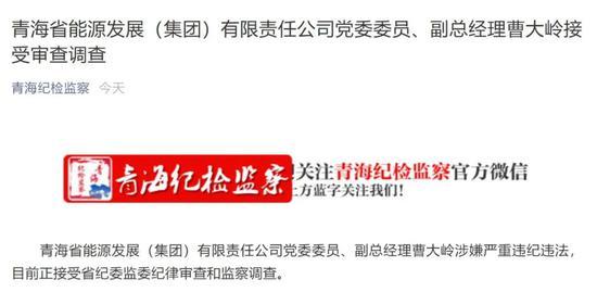 华美代理:有限华美代理公司副总经理曹大岭被图片