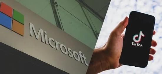 微软与TikTok(图源:外媒)