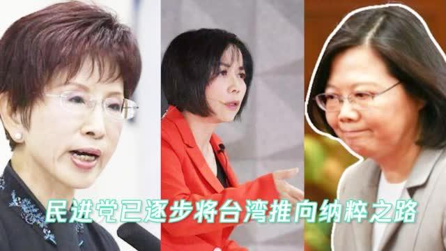 洪秀柱、黄智贤对谈 怒斥民进党:正迈向纳粹之路