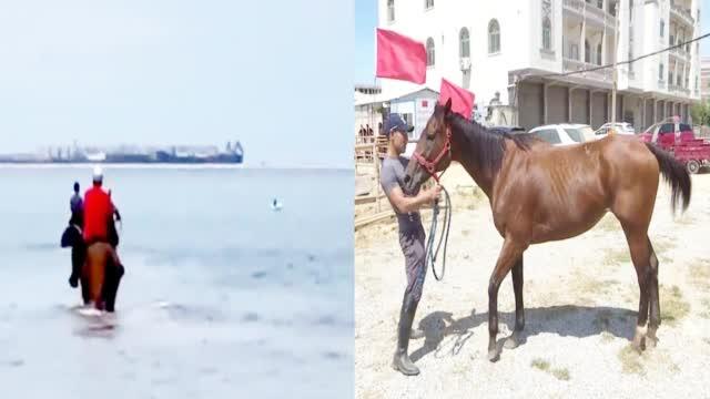3男子骑马冲进海里救起12岁男孩