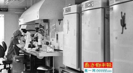 ←生殖医学医生进行胚胎培养、观察、冷冻、解冻的操作台。