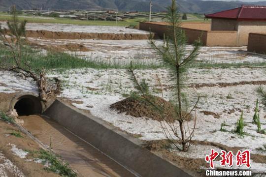 """甘肃庆阳遭冰雹袭击""""冰被""""覆盖黄土塬若入冬"""