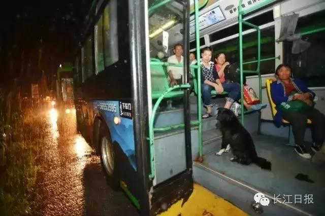 消泗乡所有没有断电的村子响起应急广播,要求村民紧急撤离