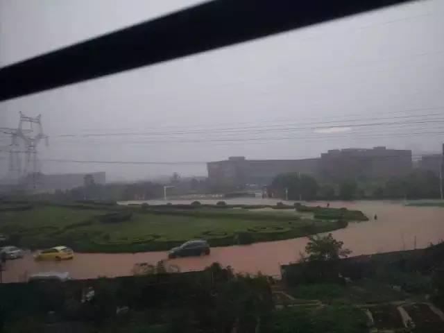 ▲汤逊湖附近,马路全淹。