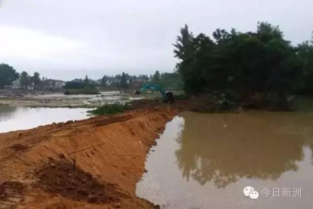 同时7月4日新洲辛冲溃口40米长溃口成功封堵。