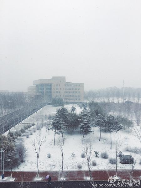 冷空气继续发威 【东北华北局地降温超8℃】