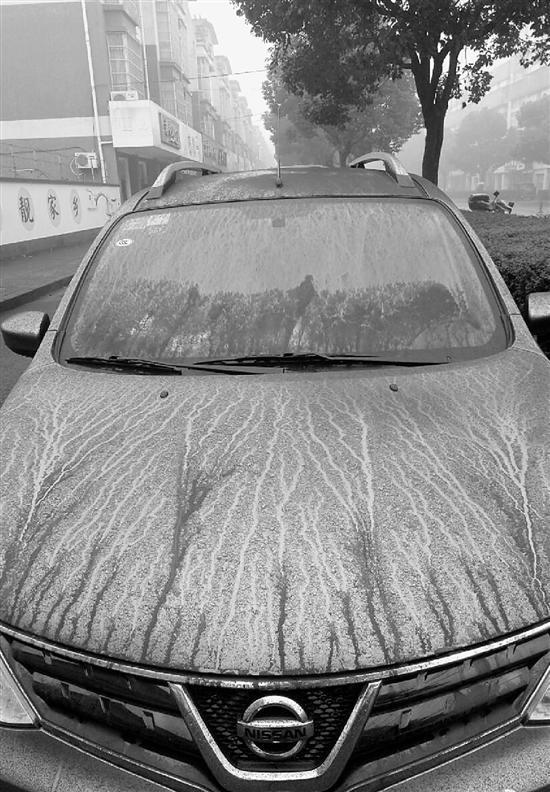 汽车上覆盖了一层黑黑的粉末。