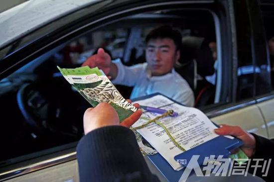 北京八达岭老虎袭人事件:伤者缘何成为全网公敌