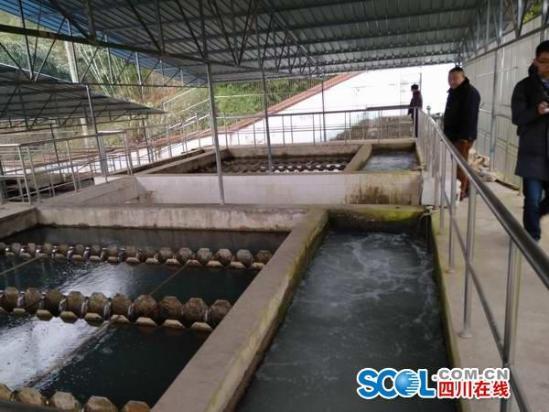 1月11日,始阳水厂水处理设备正常运转。这套设备老旧,供水能力也不足。