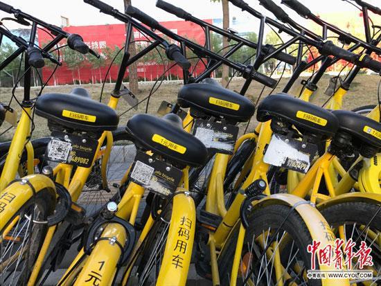 北京市丰台区,一些共享单车的车牌被损毁。中国青年报·中青在线记者 李想/摄