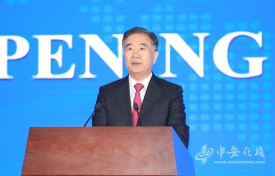 中共中央政治局委员、国务院副总理汪洋发表主旨演讲并宣布大会开幕。
