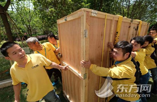 东方网5月28日报道:近日,家住上海徐汇区的消费者朱女士购买了一台大电视机,因为彩电体积太大,不得不靠吊装才运到家中。