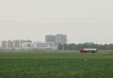 5月1日,在雄安新区安新县大王镇,一辆汽车从农田旁驶过。新华社记者才扬/摄