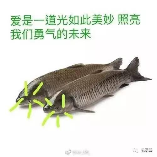 图片来源:@巩高峰微博