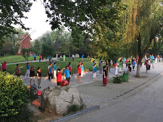 韩大爷广场舞队每早依旧聚集在公园大树下跳操。