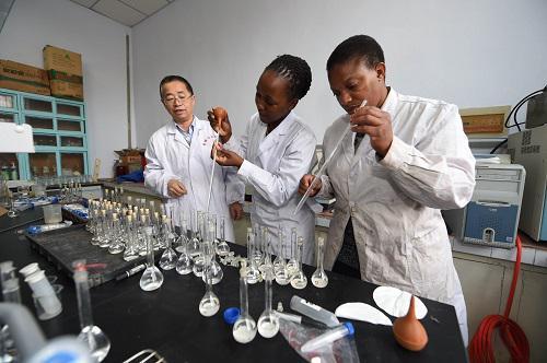 材料图:在吉林农业年夜学,教学(左一)率领两名南非留先生做试验。新华社记者张楠摄