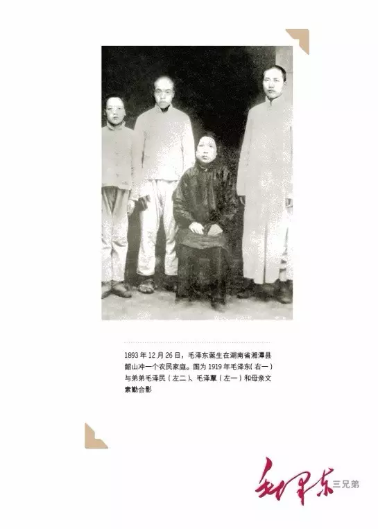 《毛泽东三兄弟》