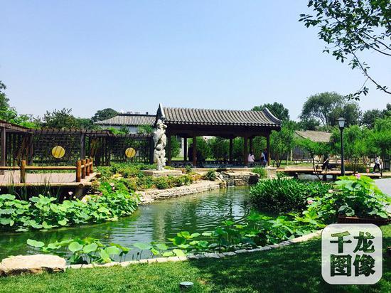 位于北京市东城区前门的三里河景观,经过九个月的整治,水穿街巷,宛如江南水乡。图为景观一隅。千龙网记者欧阳晓娟摄